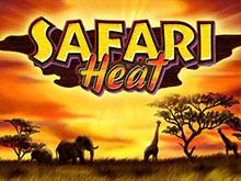 Новый игровой автомат Safari Heat